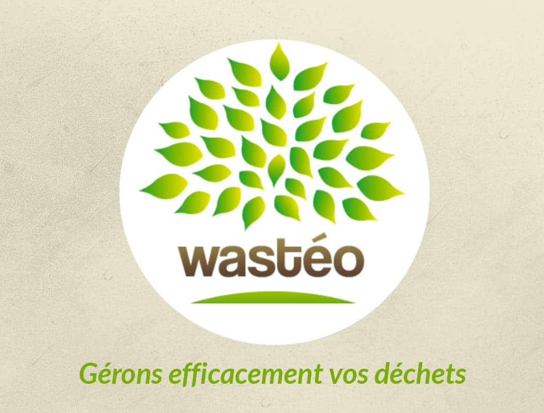 Logo wasteo